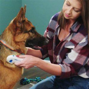 Brosse anti puces électrique | Flea Doctor Chiens Doggy & Co