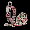 Collier pour chien coloré Chiens Doggy & Co 26