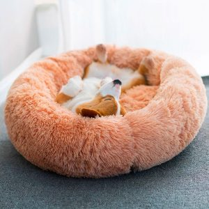 Coussin pour chien ultra-moelleux | Doggy Bed Chats Doggy & Co