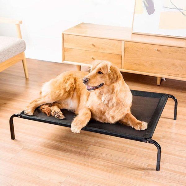 Lit rafraîchissant pour chien surélevé Coussins pour chien Doggy & Co 3