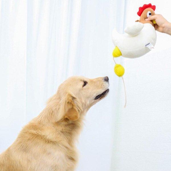 Peluche de reniflage fouille pour chien en forme de poule