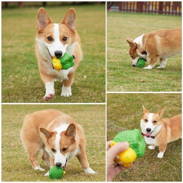 Jouet pour chien en caoutchouc Jouets pour chien et chat Doggy & Co 10
