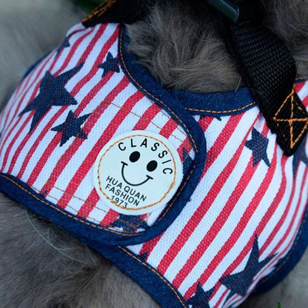 Harnais pour chien Américain Harnais pour chien Doggy & Co 7