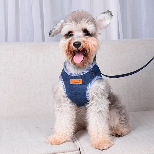Harnais pour chien Américain Harnais pour chien Doggy & Co 8