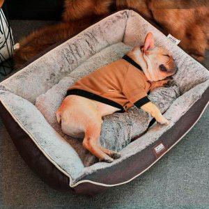 Panier pour chien à mémoire de forme Coussins pour chien Doggy & Co