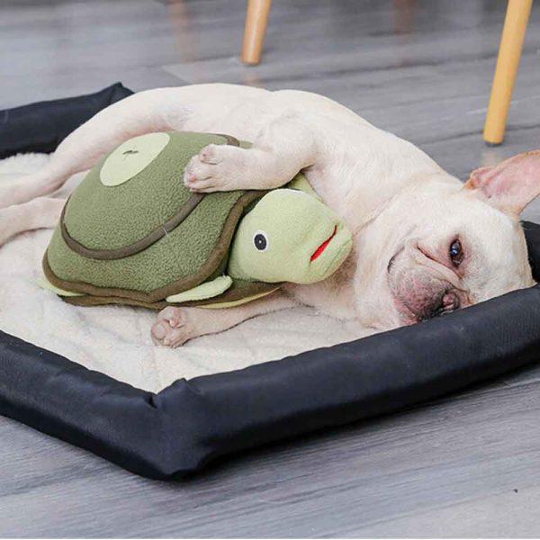 Peluche pour chien de fouille en forme de tortue