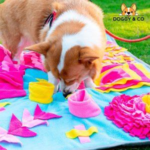 Tapis de fouille et de jeu pour chien Jouets pour Chiens Doggy & Co 2