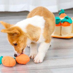 Tapis de fouille pour chien avec carotte détachables Jouets pour Chiens Doggy & Co