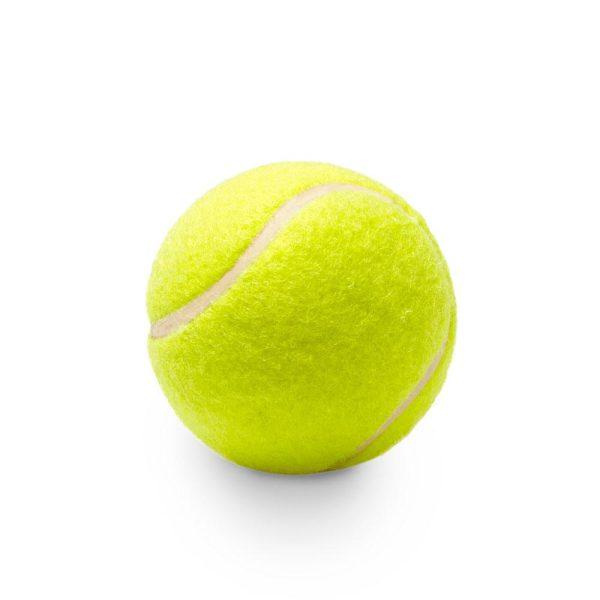 Balle de tennis pour chien Jouets pour Chiens Doggy & Co 3