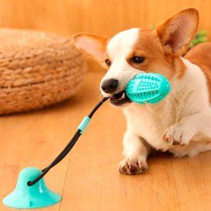 Jouet ventouse pour chien avec balle et corde élastique Jouets pour chien et chat Doggy & Co