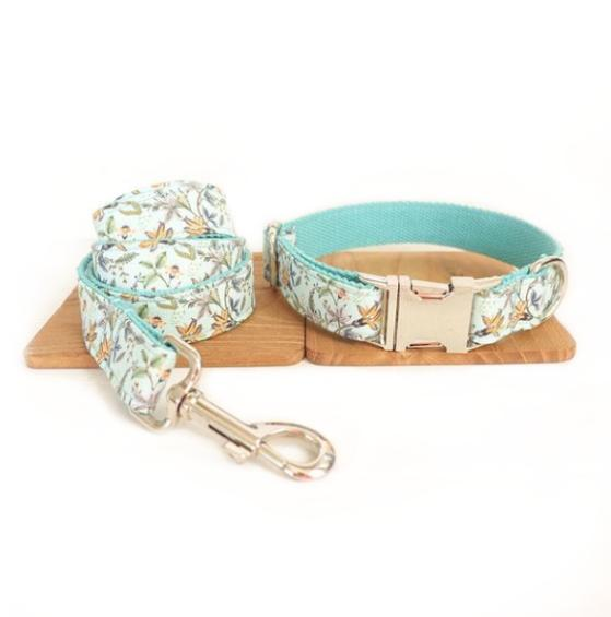 Collier pour chien Caraïbe   Doggy & Co - Doggy & Co