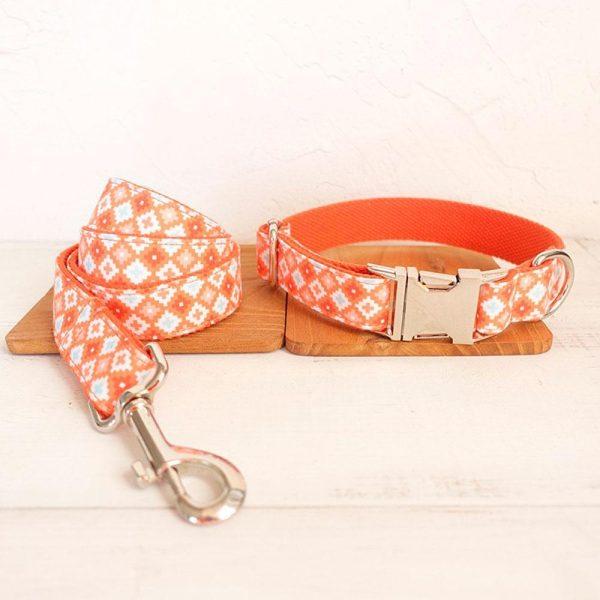 Collier pour chien Orange POP - Doggy & Co