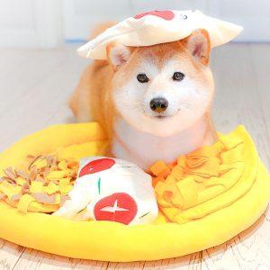 Tapis de fouille en forme de pizza Jouets pour Chiens Doggy & Co