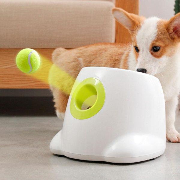 Lanceur de Balle pour chien Jouets pour chien et chat Doggy & Co 6
