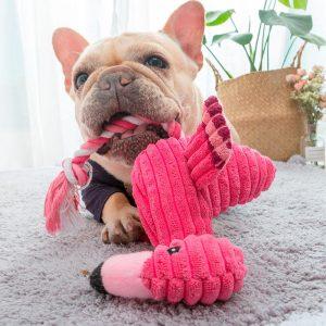 Peluche pour chien – Flamant rose Jouets pour Chiens Doggy & Co
