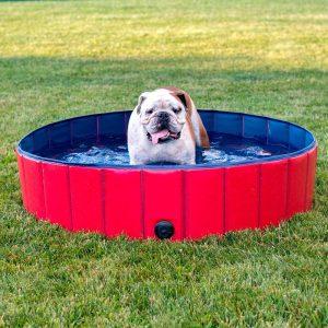 Piscine ronde pour chien Accessoires Doggy & Co